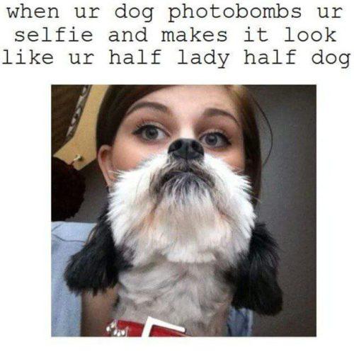 half lady, half dog